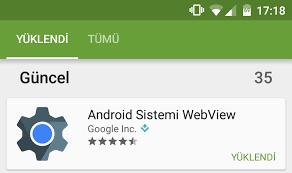 Webview Nedir ?