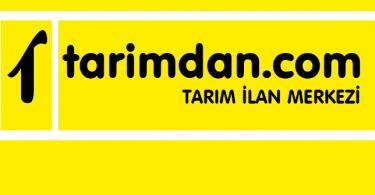 tarimdan.com