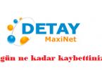 detaymaxinet