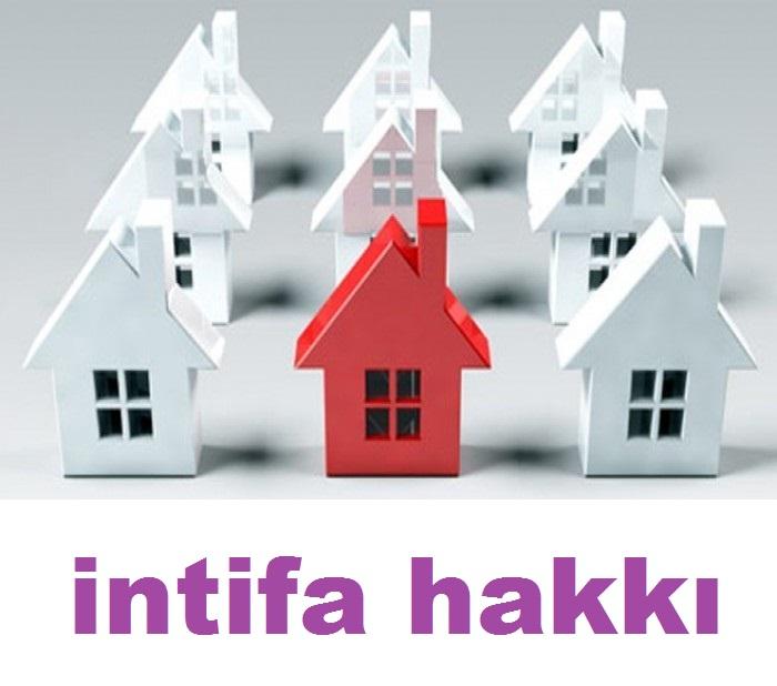 Intifa-Hakki