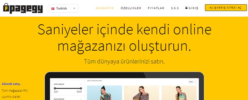 pagegy.com
