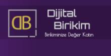 dijital-birikim